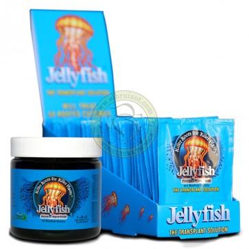 Jellyfish 10 G