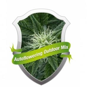 Autoflowering Outdoor Mix