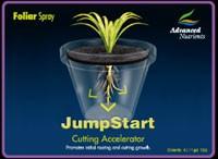Jump Start 1 L.