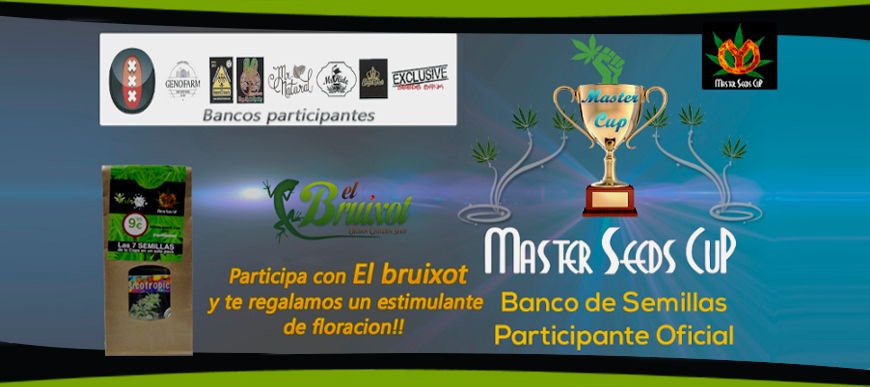 Copa Master Seed