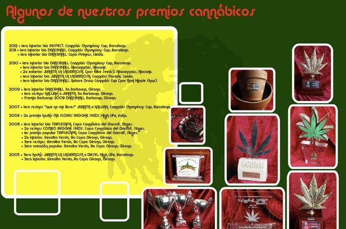 Premios Reggae Seeds