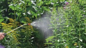 Gardening_tools-pressure_sprayer_02